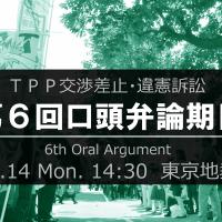 20161114-tpp-6th-oral-argument-2